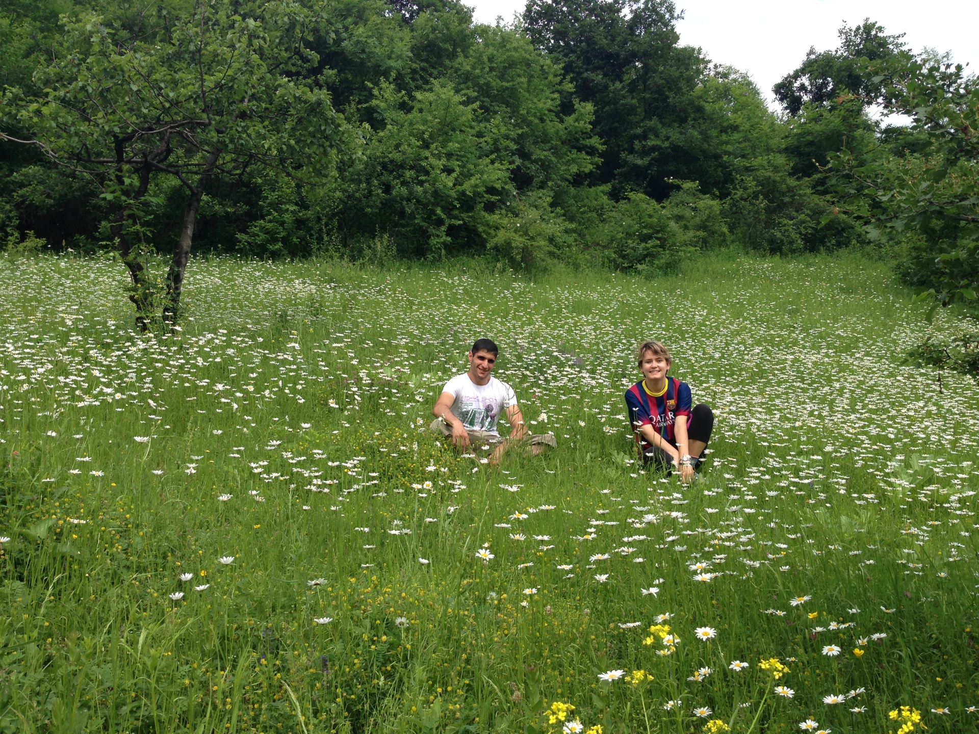 Enjoying the meadows at Sedvi